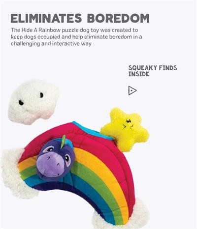 Hide A Rainbow Toy