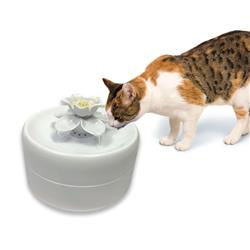 Magnolia Drinking Fountain by Pioneer Pet