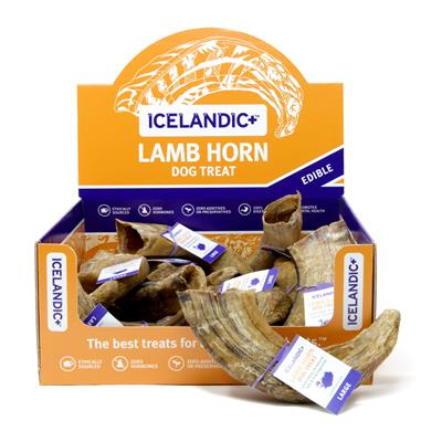 Large Lamb Horn - 12-Piece Display Box by Icelandic+