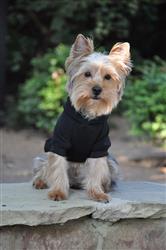 Flex-Fit Dog Hoodie - Black