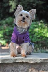 Flex-Fit Dog Hoodie - Purple