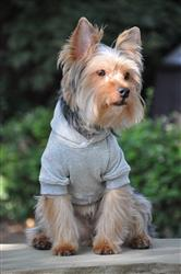 Flex-Fit Dog Hoodie - Gray
