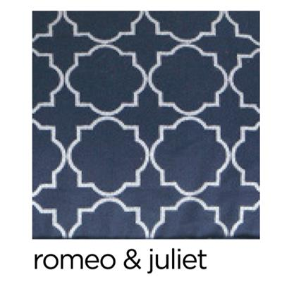 romeo & juliet couch cover