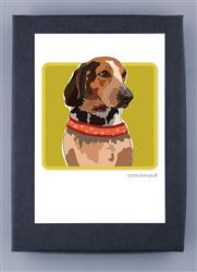 Grrreen Boxed Note Cards: Coonhound