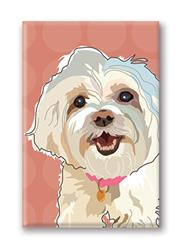 Fridge Magnet: Maltese Smiling