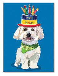 Greeting Card: Birthday - Coton W/ Birthday Cake Hat