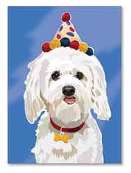 Greeting Card: Birthday - White Dog W/ B-day Hat