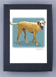 Grrreen Boxed Note Cards: Lab Yellow, Full body