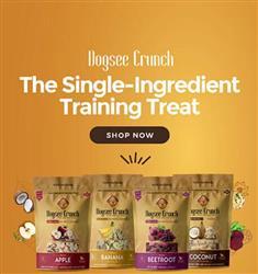 Dogsee Crunch Premium Fruit Chews 70 g