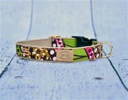"""1"""" Floral Dot Print Collars and Leads"""
