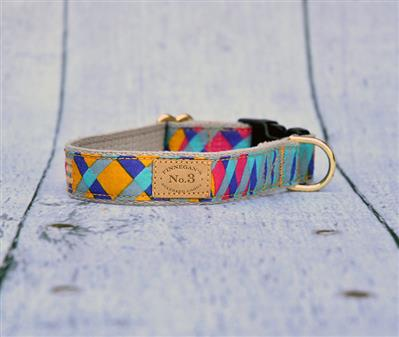 "1"" Kaleidoscope Collars and Leads"