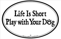 Life Is Short... Play with Your Dog Magnets