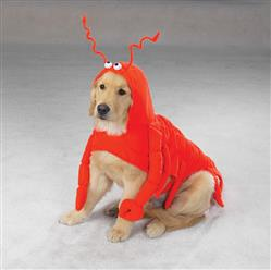 Casual Canine Lobster Paws Costume