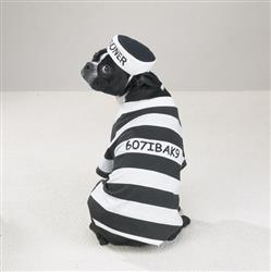 Casual Canine Prison Pooch Costume