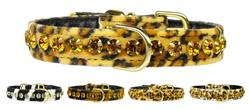 Tropical Dazzler Animal Print Collars
