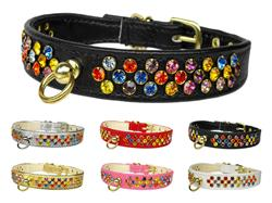 Confetti Jewel Set Collars