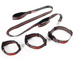 Dexas Off-Leash Reflective Collar and Lead