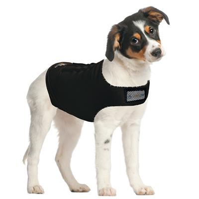 ZenDog Calming Compression Shirt