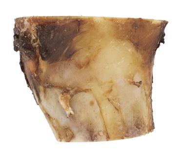 "Bison Marrow Bone - 3"""