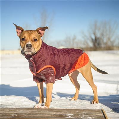 Reversible Trail Jacket by GF Pet