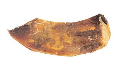 Beef Scapula
