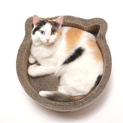 Cat-headed Scratcher Bed (Birch) - Medium