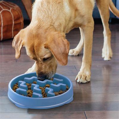 Fun Feeder Slo-Bowl - Blue Notch by Outward Hound®