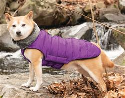 Hemlock Puffy Dog Coats