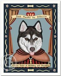 San Husky de Siberia - BROWN eyes