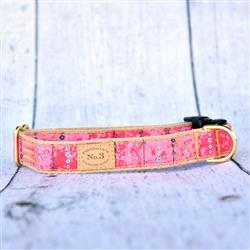 """1"""" Red Arrow Collars and Leads"""
