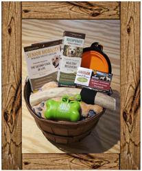 Graybeard Box - Large Dog Senior Mobility & Recuperate Gift Basket