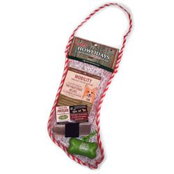 Small Dog Yappy Howlidays Stocking