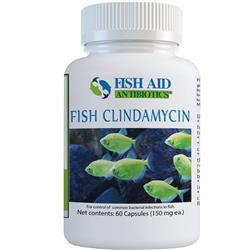 Clindamycin Capsules 150mg (60 Capsules)