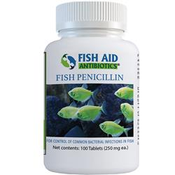 Penicillin Tablets 250mg (100 Tablets)