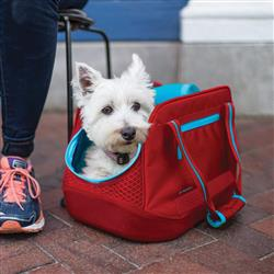 Explorer Dog Carrier - Barn Red/Chili Red/Light Coastal Blue
