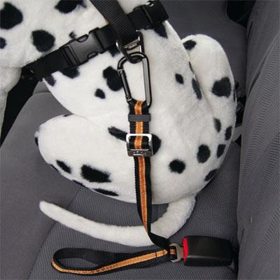 Direct to Seatbelt Tether