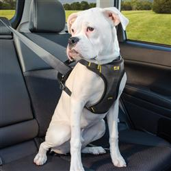 Impact Harness - Dog Seatbelt