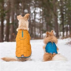 Loft Dog Jacket