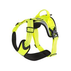 Active Dazzle Harness