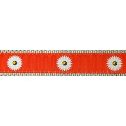"""Orange Daisy - 3/4"""" Collars, Leashes and Harnesses"""