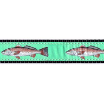 """Redfish - 1.25"""" Collars, Leashes and Harnesses"""