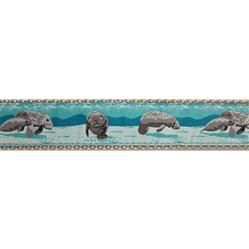 """Manatee - 1.25"""" Collars, Leashes and Harnesses"""