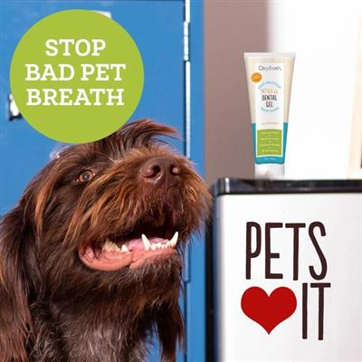Pet Dental Gel Toothpaste by Oxyfresh  - 1 oz. Tube