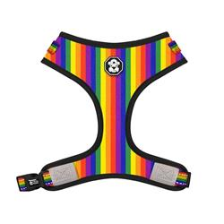 The Pride Rainbow Flag | Adjustable Mesh Harness