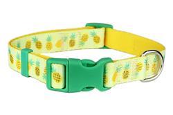 Pineapples Dog Collar / Leash
