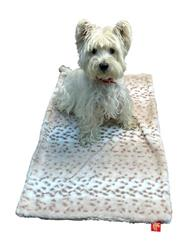 Small Blanket, Sno Leopard