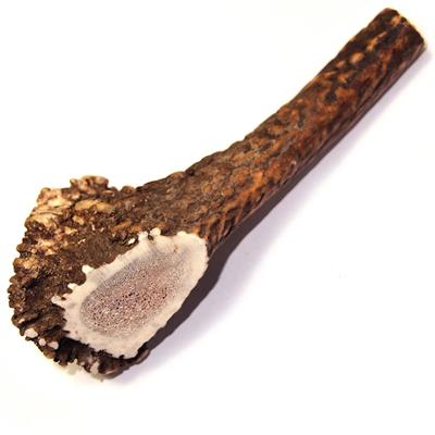 Royal Brown Deer Antler - Whole Large