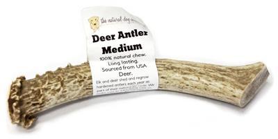 USA Deer Antler - Medium