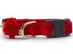 Mistletoe Red Velvet Cat Collar