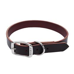 Circle T® Latigo Leather Town Dog Collar